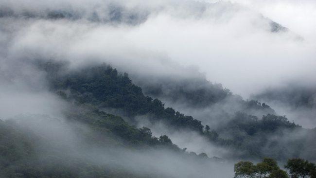 «Туманные» хранилища могут стать безопасной альтернативой «облачным»