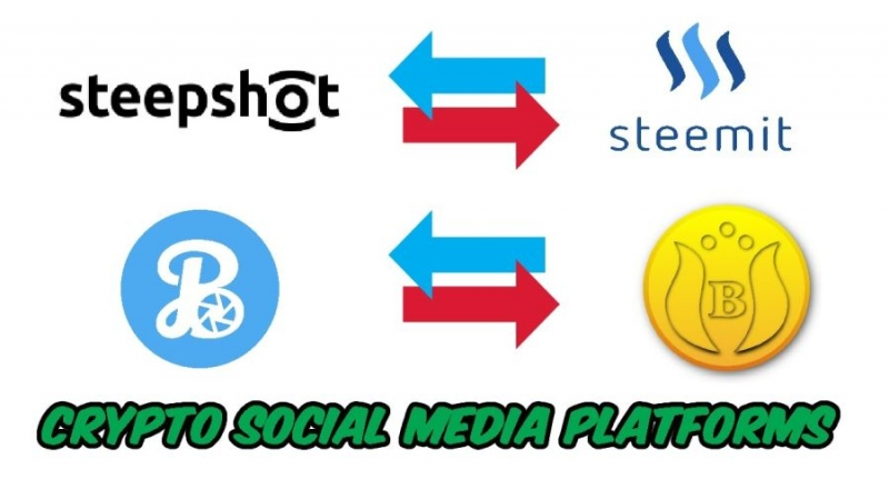 Белорусская сеть Steepshot – аналог Steemit и ГОЛОС
