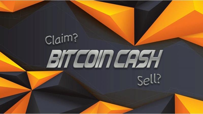 Bitcoin Cash падает: что делать с монетами