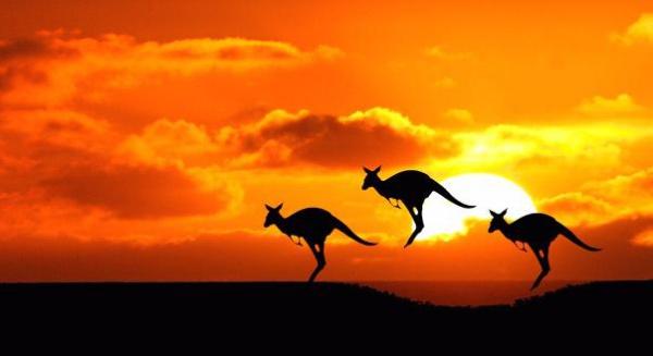 В самом сердце Австралии обнаружена секретная база США для перехвата связи