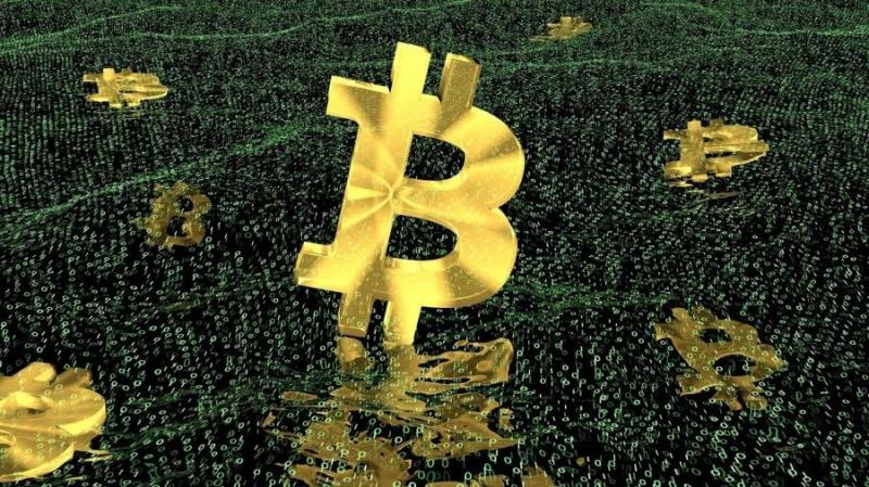 Сбербанк и власти Петербурга создают блокчейн-площадку для госзакупок