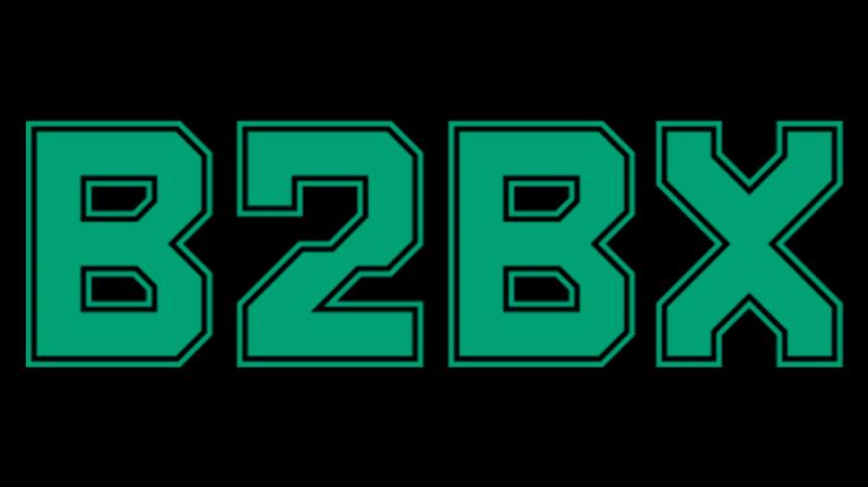 Проект B2BX провел аудит ценности своего токена