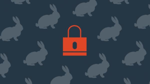 Эксперты: Атаки Bad Rabbit не преследовали финансовую выгоду