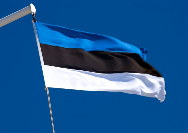 В Эстонии задержан россиянин по подозрению в подготовке кибератак