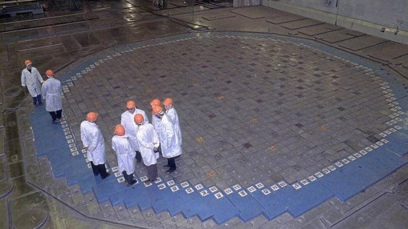 Ленобласть нашла инвесторов для создания фермы на ЛАЭС