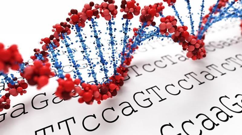 Nebula Genomics предлагает продавать данные о геноме за криптовалюту