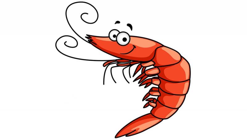 Креветки как еще один стресс-тест Эфириума