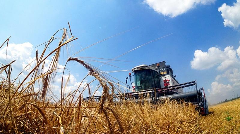 Казахстан планирует перевести торговлю зерном на блокчейн