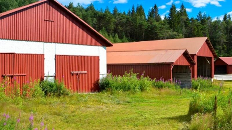 Более 100 инвесторов купили за криптовалюту участки в норвежском частном городе Либерштад