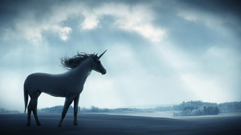 В индекс Unicorn впервые вошли компании, ориентированные исключительно на криптовалюты